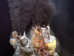"""Mission Bicose 2014 