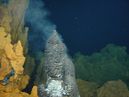 Physical Resources and Deep-Sea Ecosystems