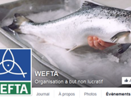 WEFTA on Facebook